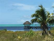 Homes for Sale in Club Caribbean, Ambergris Caye, Belize $250,000