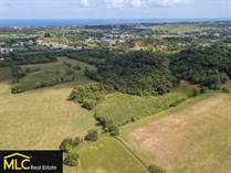 Lots and Land for Sale in Bo. Camuy Arriba, Camuy, Puerto Rico $99,500