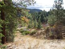 Lots and Land for Sale in Summerland Rural, Summerland, British Columbia $319,000