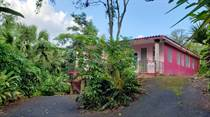 Homes for Sale in Bo. Mulas, Aguas Buenas, Puerto Rico $74,000