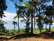 Lots and Land for Sale in Escaleras , Dominical, Puntarenas $399,000