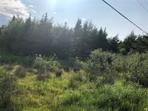 Lots and Land for Sale in Witless Bay, Newfoundland and Labrador $239,900