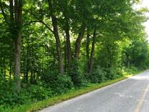 Lots and Land for Sale in Rideau Lakes, Lombardy, Ontario $195,000