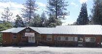 Commercial Real Estate for Sale in California, Badger, California $374,900