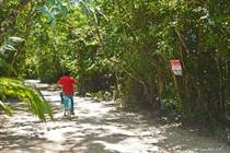 Lots and Land for Sale in Central, Puerto Morelos, Quintana Roo $72,000