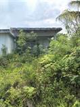 Lots and Land for Sale in Chicxulub Puerto, Yucatan $235,000