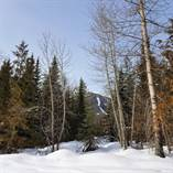 Lots and Land for Sale in Fernie Alpine Resort Ski Hill, Fernie, British Columbia $269,000