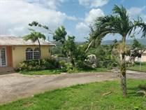 Homes for Sale in Valenciano, Juncos, Puerto Rico $165,000