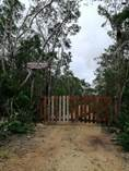 Lots and Land for Sale in Tulum, Quintana Roo $16,500,000
