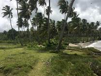 Lots and Land for Sale in Samana, Samaná $1,500,000