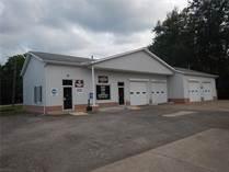 Commercial Real Estate for Sale in Ashtabula, Ohio $310,000