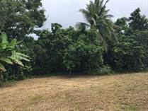 Lots and Land for Sale in Bo Factor, Arecibo, Puerto Rico $40,000
