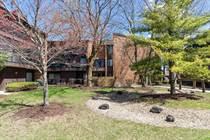 Condos for Sale in Scarborough Fare, Oak Forest, Illinois $99,900