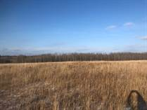 Lots and Land for Sale in Beaver Ave., Dryden, Ontario $35,000