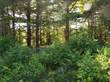 Lots and Land for Sale in Upper Branch, Nova Scotia $25,000