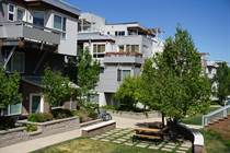Condos for Sale in University Heights, Boulder, Colorado $389,900
