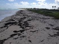 Lots and Land for Sale in Mahahual, Quintana Roo $140,000