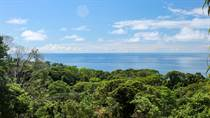 Lots and Land for Sale in Dominicalito, Puntarenas $195,000