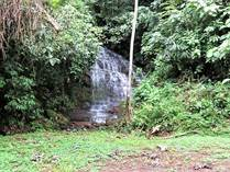 Lots and Land for Sale in Dominical, Puntarenas $189,000