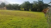 Lots and Land for Sale in BAYANEY, Hatillo, Puerto Rico $58,900