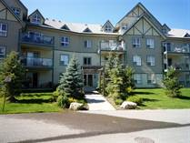 Condos for Sale in The Peaks Birch, Radium Hot Springs, British Columbia $177,000