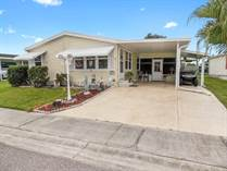 Homes for Sale in Forest Lake Estates, Zephyrhills, Florida $32,500