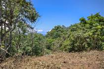 Lots and Land for Sale in Nosara, Avellanas, Guanacaste $149,000