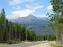 Lots and Land for Sale in Valemount, British Columbia $120,000