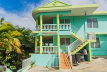 Multifamily Dwellings for Sale in Puntas, Rincon, Puerto Rico $679,000