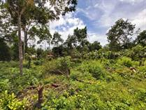 Lots and Land for Sale in Manuel Antonio, Puntarenas $120,000
