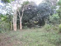 Homes for Sale in Bo. Naranjo, Moca, Puerto Rico $55,000