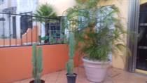 Homes for Sale in Porto Alegre, Cancun, Quintana Roo $1,650,000