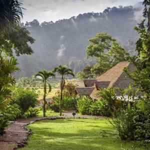 Rafiki Lodge or Ultimate Homestead