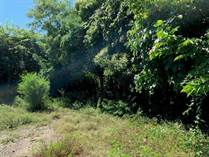 Lots and Land for Sale in Higuera Blanca, Nayarit $450,000