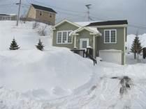 Homes for Sale in Newfoundland, Paradise, Newfoundland and Labrador $244,500