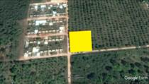 Lots and Land for Sale in Oxkutzcab, Yucatan $600,000