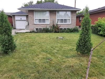 110 Kennard Ave, Suite Lower, Toronto, Ontario