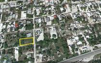 Lots and Land for Sale in Chelem, Yucatan $30,000