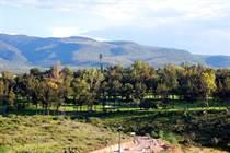 Homes for Sale in Malanquin, San Miguel de Allende, Guanajuato $157,500