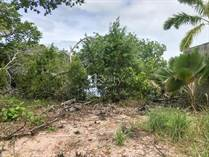 Lots and Land for Sale in Northern Highway , Belize City, Belize $100,000