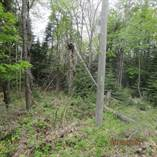 Lots and Land for Sale in Huntsville, Ontario $45,000