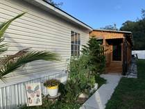 Homes for Sale in Lamplighter On The River, Tampa, Florida $69,900