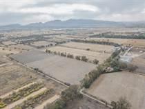 Homes for Sale in Carretera a Queretaro, Guanajuato $2,000,000