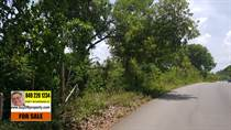 Lots and Land for Sale in La Mulata, Sosua, Puerto Plata $172,120