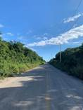Lots and Land for Sale in Region 15, Tulum, Quintana Roo $1,695,715