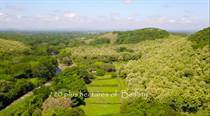 Farms and Acreages for Sale in Cañas, Guanacaste $2,500,000