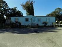Homes for Sale in Three Lakes Mobile Home Park, Tampa, Florida $63,000
