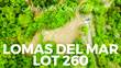 Lots and Land for Sale in Matapalo Beach , Guanacaste $66,792
