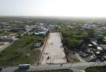 Lots and Land for Sale in Bavaro, La Altagracia $527,765
