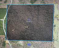 Lots and Land for Sale in Falkner, Ripley, Mississippi $240,000